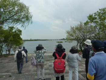 帰路、樹林のあいだから谷中湖が出現した