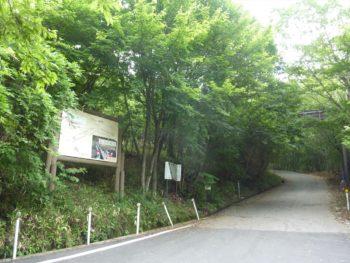 粕尾峠から東へ向かい横根高原へとつづく道
